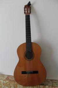 guitars 002